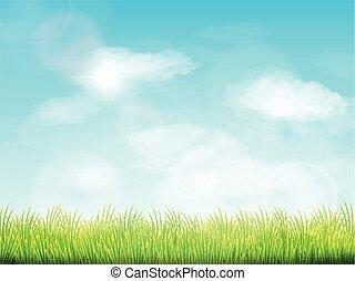 μπλε , αγρός αγρωστίδες , ουρανόs , πράσινο