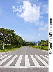 μπλε , βόλτα , δρόμος , ουρανόs , κυκλοφορία , zebra, δρόμος , σταυρός