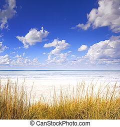 μπλε , παραλία , αμμόλοφοι , ουρανόs , οκεανόs , άμμοs , άσπρο , γρασίδι