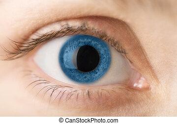 μπλε , macro , μάτι , ανθρώπινος
