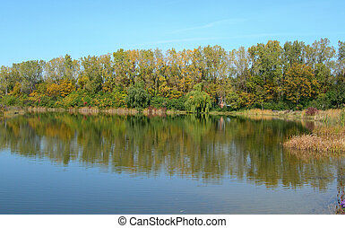 μπογιά , λιμνούλα , φθινόπωρο