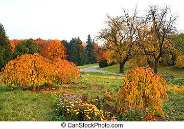 μπογιά , autumn., ζωηρός , πέφτω
