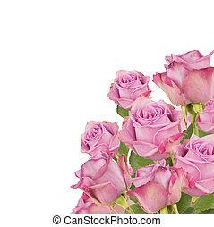 μπουκέτο , τριαντάφυλλο