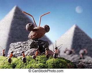μυρμήγκι , σφίγγα , και , pyramiding, μυρμήγκι , tales