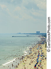 μυρτιά , παραλία , νότιο