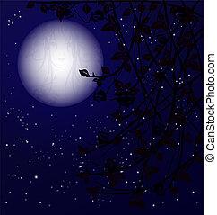 μυστήριο , νύκτα