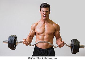 μυώδης , shirtless , ανέβασμα , άντραs , barbell