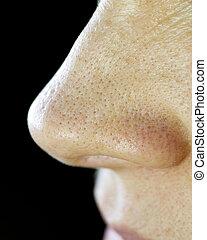 μύτη , πόρος