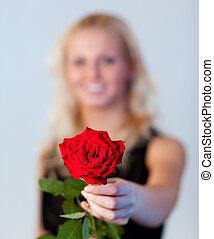 νέα γυναίκα , κράτημα , ένα , τριαντάφυλλο , με , εστία , επάνω , τριαντάφυλλο