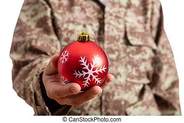 νέος , στρατιώτης , κράτημα , ένα , κόκκινο , διακοπές...
