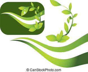 νεαρό φυτό