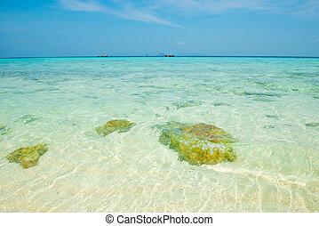 νερό , θαλασσογραφία , καθαρά , διαφανής