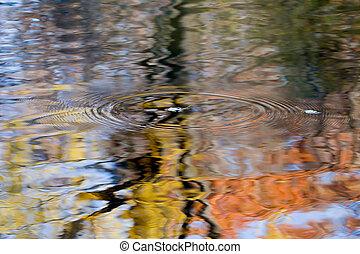 νερό , φθινόπωρο φύλλο , αλίσκομαι