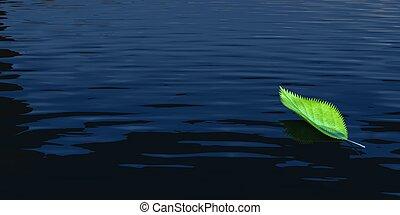 νερό , φύλλα , πράσινο
