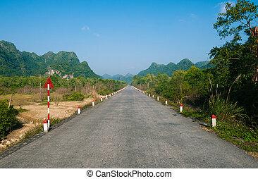νησί , μοναχικός , μαϊμού , δρόμοs , vietnam