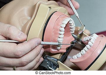 οδοντίατρος , δουλειά