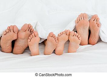 οικογένεια , αναμμένος άρθρο κρεβάτι , στο σπίτι , με , δικό τουs , πόδια , εκδήλωση