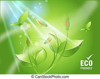 οικολογία , γενική ιδέα