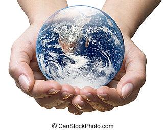 οικολογία , κόσμοs