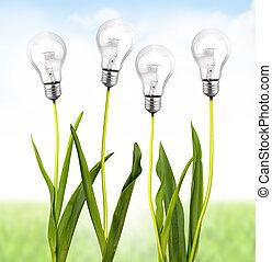 οικολογικός , ενέργεια