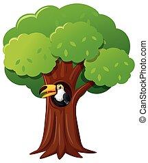 οπωροφάγο πτηνό με μέγα ράμφο , δέντρο , πουλί