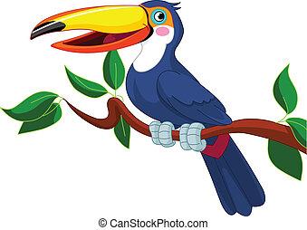 οπωροφάγο πτηνό με μέγα ράμφο , κάθονται , επάνω , αγχόνη βγάζω κλαδιά