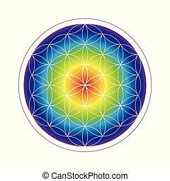 ουράνιο τόξο , ζωή , λουλούδι , γραφικός , γεωμετρία , μπογιά