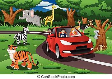 πάρκο , αισθησιακός ειδών ή πραγμάτων , ταξίδι