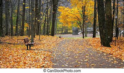 πάρκο , δρόμος , βόλτα