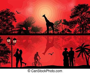 πάρκο , περίγραμμα , ηλιοβασίλεμα , κυνηγετική εκδρομή εν αφρική , άνθρωποι