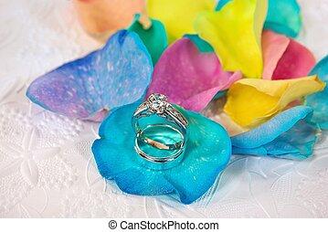 πέταλο άνθους , ουράνιο τόξο , δακτυλίδι , τριαντάφυλλο