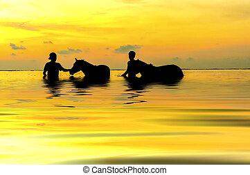 παίξιμο , ηλιοβασίλεμα , κατά την διάρκεια , άλογο , βοσκός , δυο
