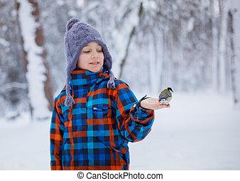 παιδί , βοσκή , ένα , αιγίθαλος , με , δικός του , ανάμιξη , μέσα , ο , χειμώναs , δάσοs