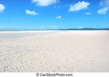 παλίρροια , παραλία , χαμηλός , whitehaven