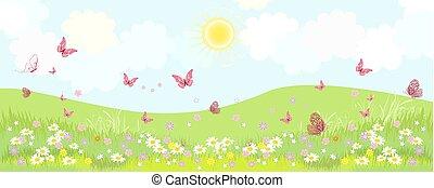 πανόραμα , ακμάζων , λουλούδια , λιβάδι , αγροτικός