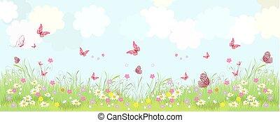 πανόραμα , ακμάζων , λουλούδια , λιβάδι , φρέσκος