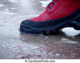 παπούτσι , μέσα , νερό