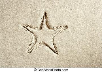 παραλία , αστερίας , τυπώνω , άσπρο , caribbean , άμμοs , καλοκαίρι