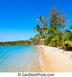 παραλία , θάλασσα , όμορφος , τροπικός