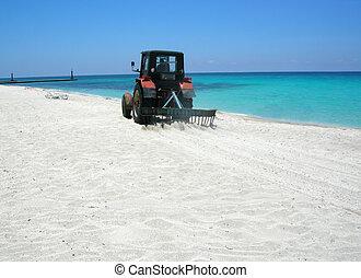 παραλία , καθάρισμα