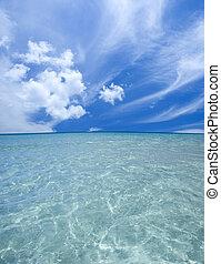 παραλία , υπέροχος
