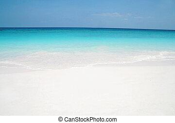 παραλία , όμορφος