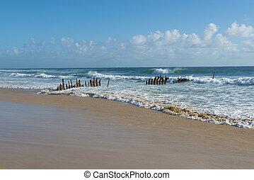 παραλία , dicky, λιακάδα , caloundra, ακτή