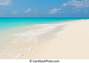 παραλία , roques, τροπικός , los , βενεζουέλα , απομονώνω