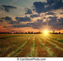 πεδίο , επαρχία , ηλιοβασίλεμα