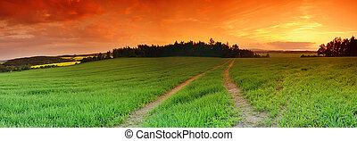 πεδίο , και , ηλιοβασίλεμα