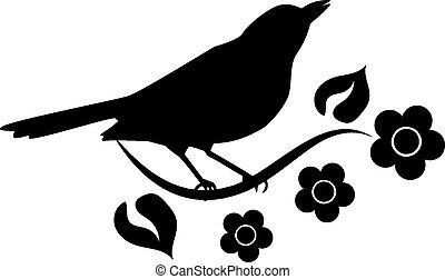 περίγραμμα , από , πουλί