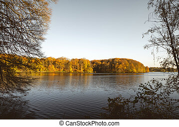 περιβάλλω , λίμνη , δέντρα , πέφτω