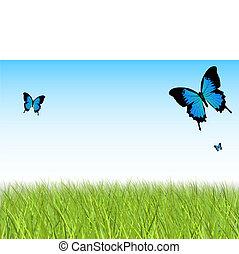πεταλούδα , γρασίδι