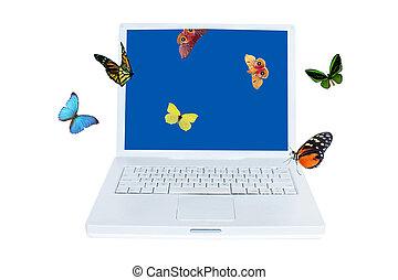πεταλούδα , ηλεκτρονικός υπολογιστής